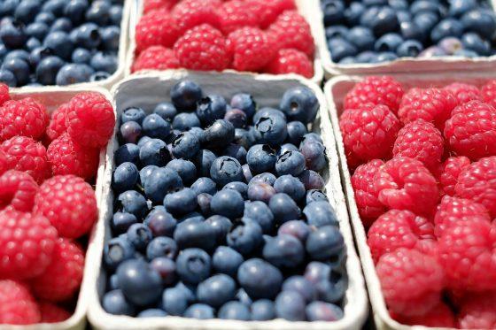 fructe-de-padure-export